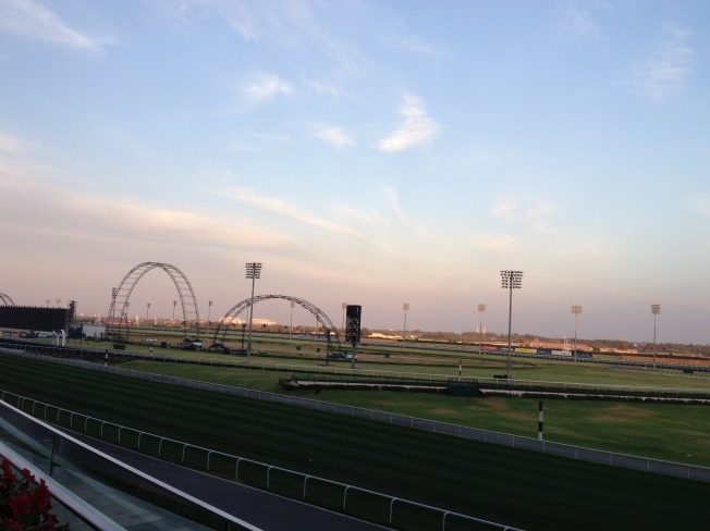 Race Course at Meydan Hotel (the venue for the workshop)